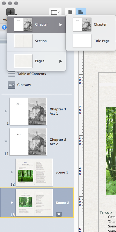 The chapter will start on a new page in iBooks Author