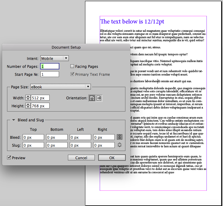 View in InDesign of 12pt text on 512x768 page