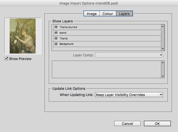 When you Place Photoshop images to InDesign, you can select layers.